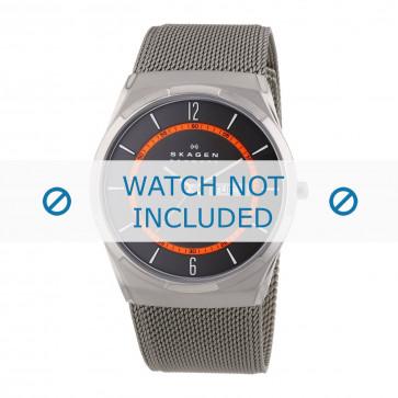 Bracelet de montre Skagen SKW6007 / 11XXXX Acier inoxydable Acier 27mm